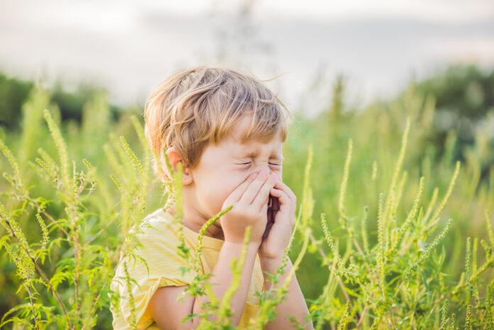 Alergia u dzieci - jakie są przyczyny?